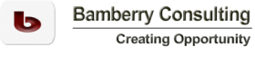 Bamberry Consulting